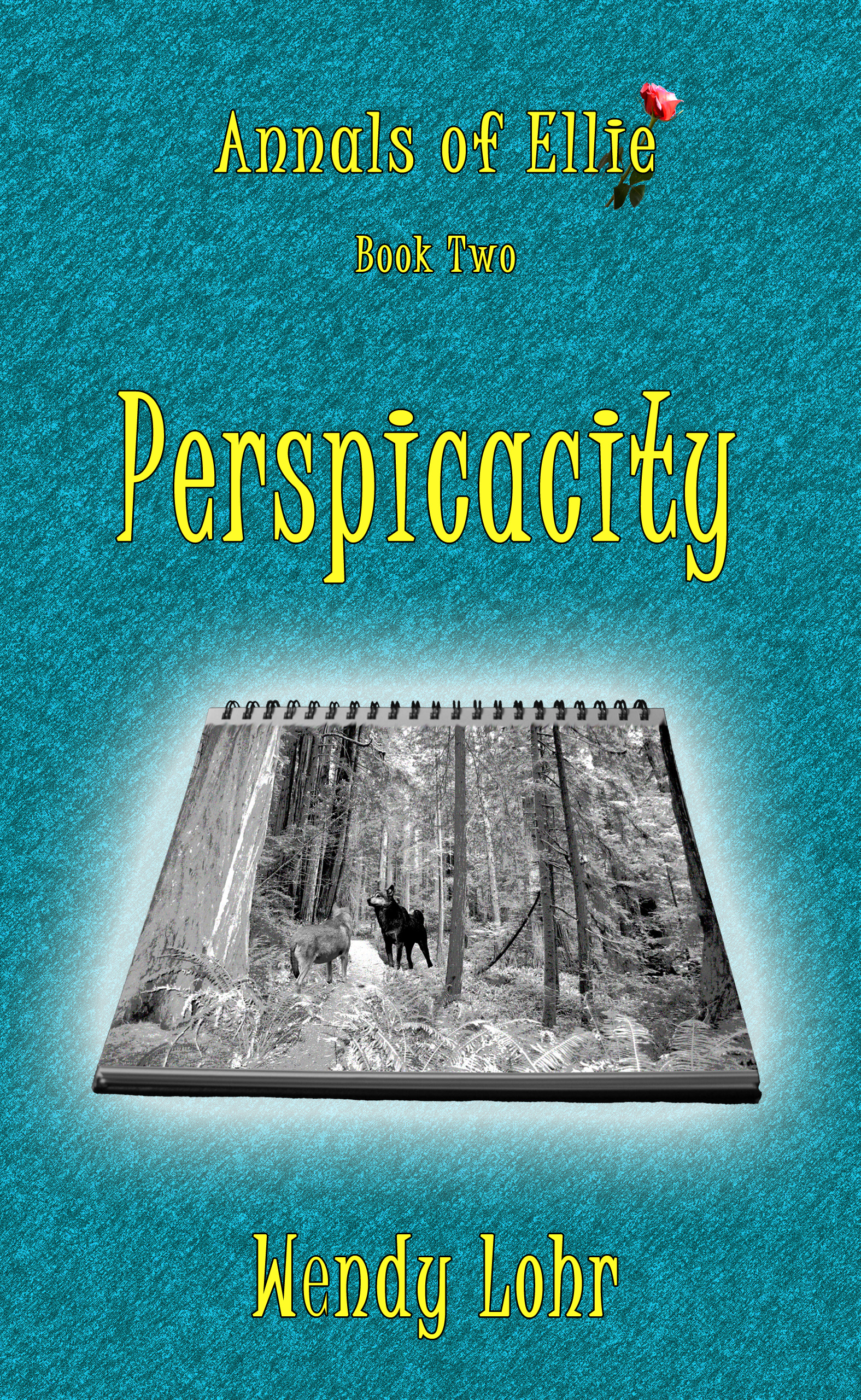 book cover for Perspicacity